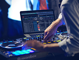 Hire a professional DJ for your party